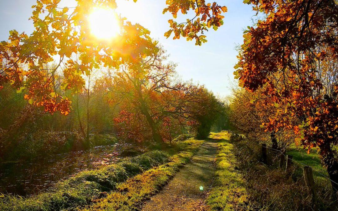 Radtour in den Herbstferien