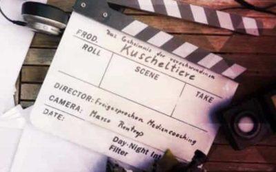Filmdreh im No.7